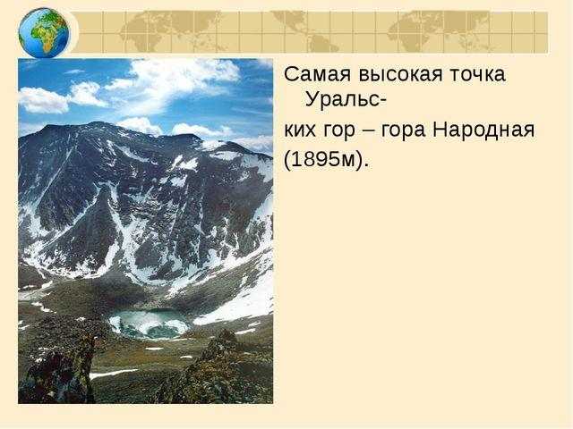 Самая высокая точка Уральс- ких гор – гора Народная (1895м).