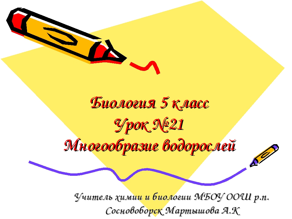 Биология 5 класс Урок № 21 Многообразие водорослей Учитель химии и биологии...