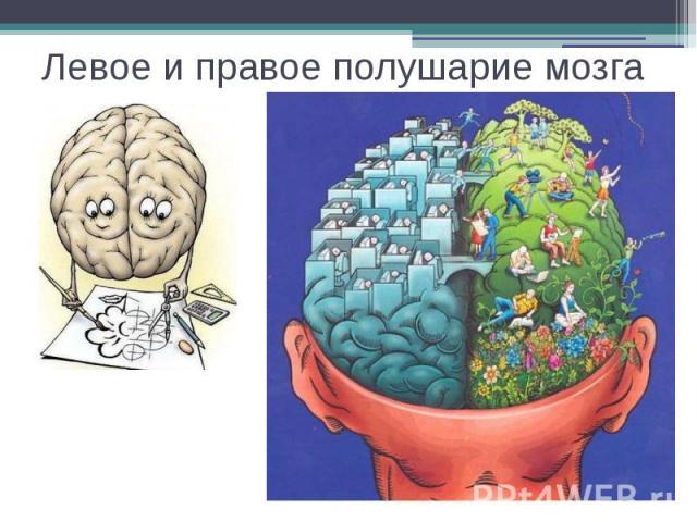 http://fs1.ppt4web.ru/images/4134/62370/640/img12.jpg
