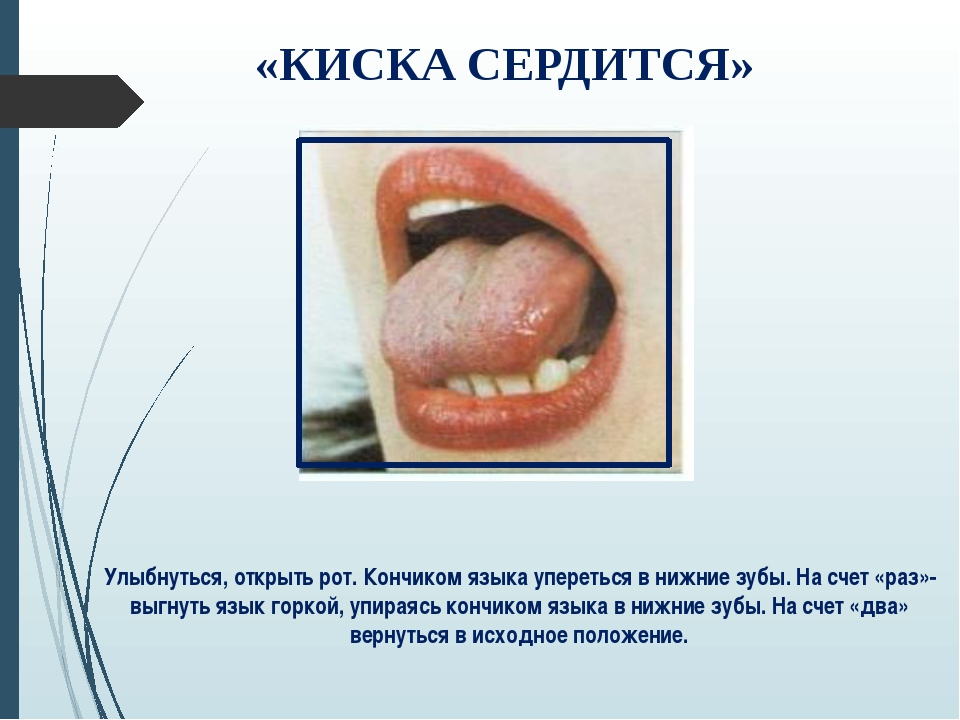 «КИСКА СЕРДИТСЯ» Улыбнуться, открыть рот. Кончиком языка упереться в нижние з...