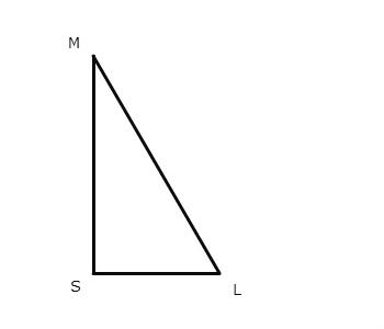 Элементы прямоугольного треугольника