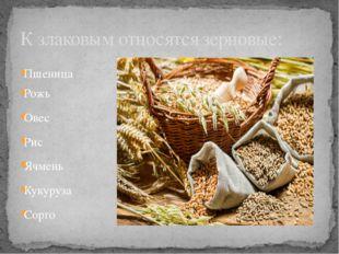 Пшеница Рожь Овес Рис Ячмень Кукуруза Сорго К злаковым относятся зерновые: