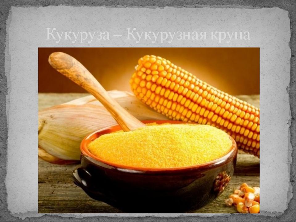 Кукуруза – Кукурузная крупа