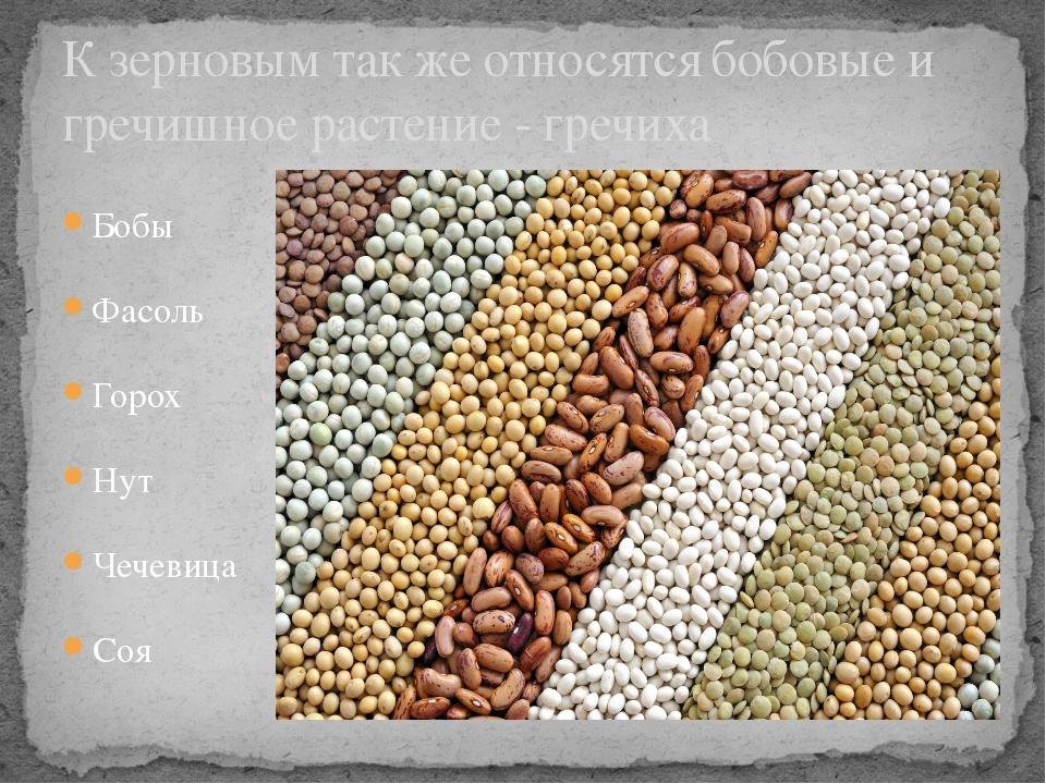 Бобы Фасоль Горох Нут Чечевица Соя К зерновым так же относятся бобовые и греч...
