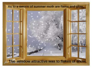 As to a sworm of summer moth are flame and glow, The window attractive was to