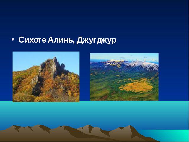 Сихоте Алинь, Джугджур