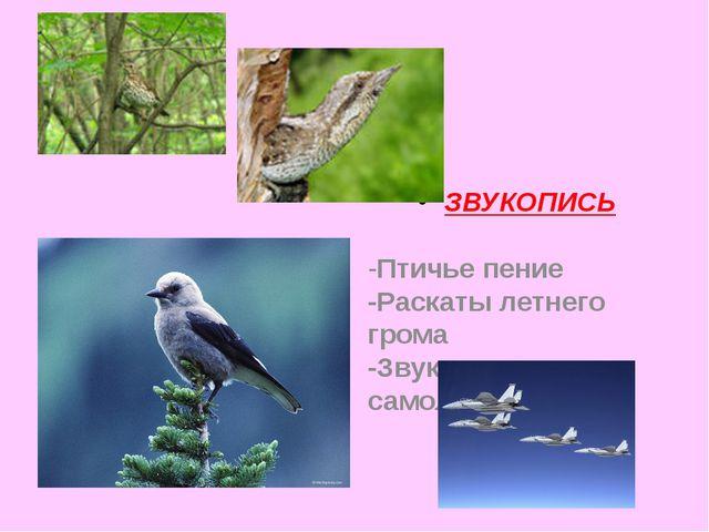 ЗВУКОПИСЬ -Птичье пение -Раскаты летнего грома -Звук реактивных самолётов