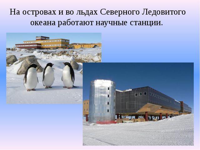 На островах и во льдах Северного Ледовитого океана работают научные станции.