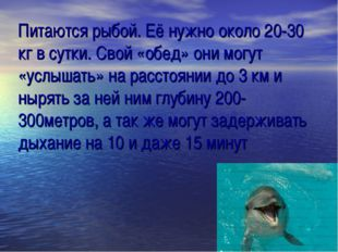 Питаются рыбой. Её нужно около 20-30 кг в сутки. Свой «обед» они могут «услыш