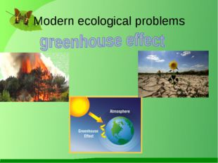 Modern ecological problems