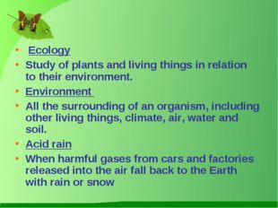 Ecology Study of plants and living things in relation to their environment.