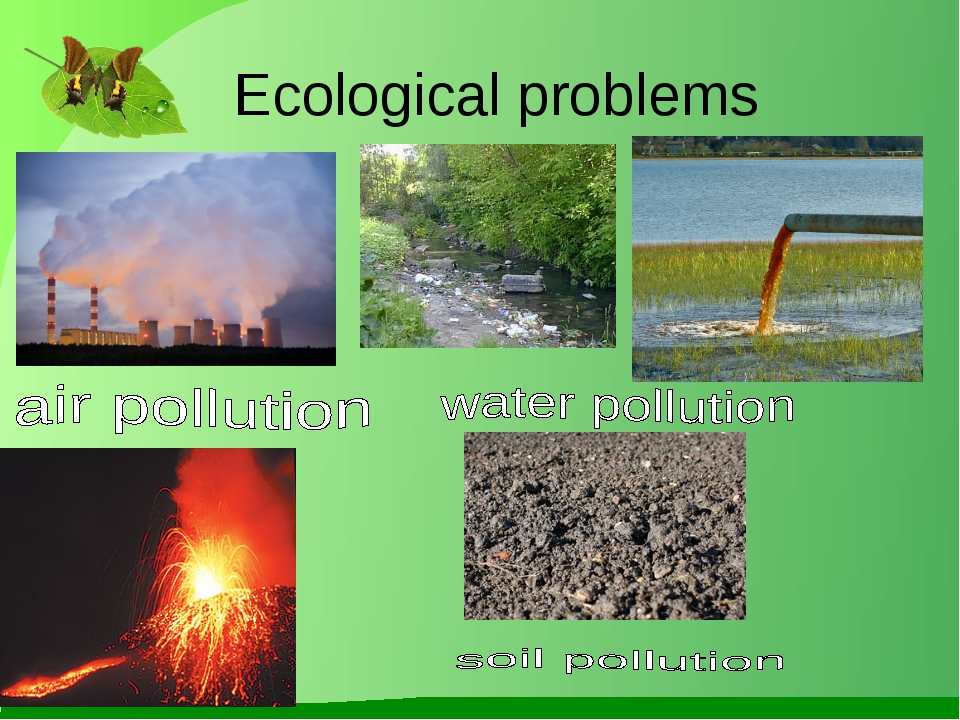 Ecological problems