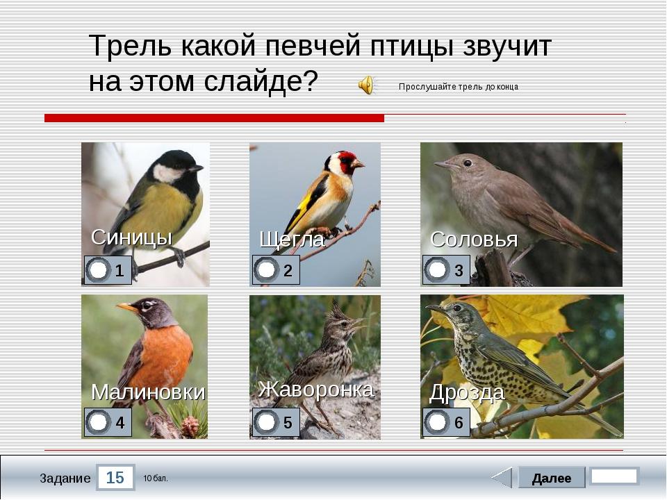 15 Задание Трель какой певчей птицы звучит на этом слайде? Синицы Соловья Дро...