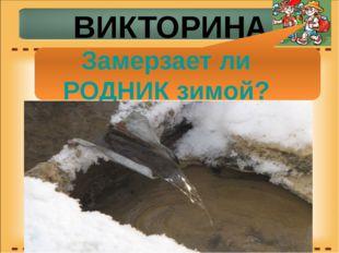 ВИКТОРИНА Замерзает ли РОДНИК зимой?
