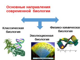 Основные направления современной биологии Классическая биология Эволюционная