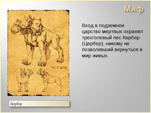 Вход в подземное царство мертвых охранял трехголовый пес Кербер (Цербер), ни