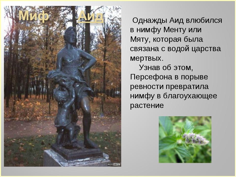 Однажды Аид влюбился в нимфу Менту или Мяту, которая была связана с водой ца...