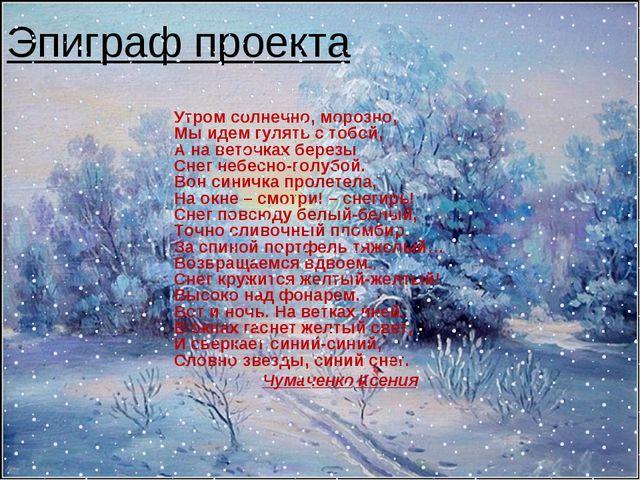 Эпиграф проекта Утром солнечно, морозно, Мы идем гулять с тобой, А на веточка...