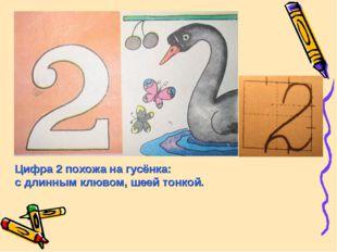 Цифра 2 похожа на гусёнка: с длинным клювом, шеей тонкой.