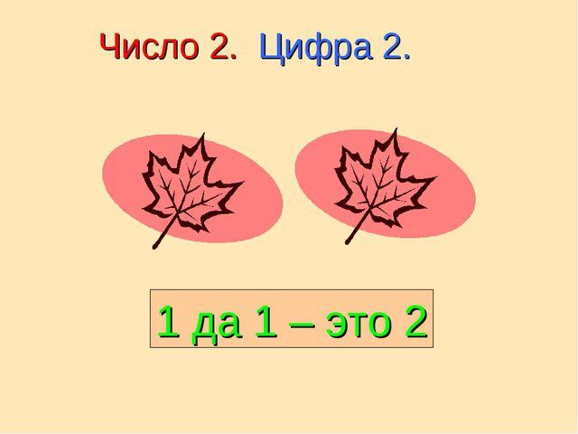 Число 2. Цифра 2. 1 да 1 – это 2