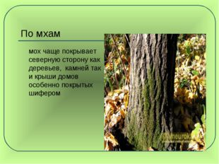 По мхам мох чаще покрывает северную сторону как деревьев, камней так и крыши