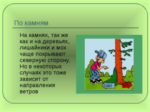 По камням На камнях, так же как и на деревьях, лишайники и мох чаще покрывают