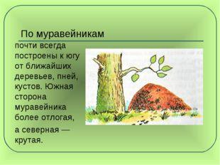 По муравейникам почти всегда построены к югу от ближайших деревьев, пней, ку