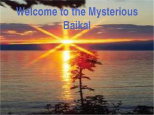 In Baikal you can find a sea animal- seal (it's Baikal seal). It has beautifu