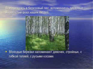 Всматриваясь в березовый лес, вспоминаешь трудовые мозолистые руки наших люде