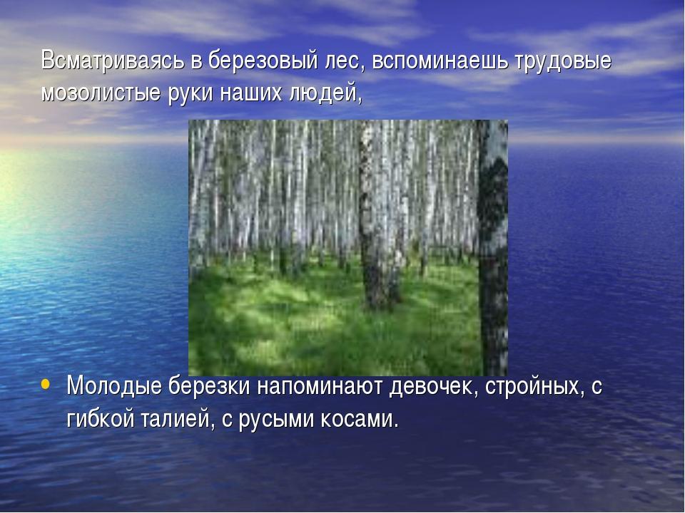 Всматриваясь в березовый лес, вспоминаешь трудовые мозолистые руки наших люде...