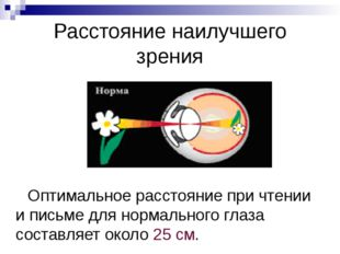 Чем смотрит человек? «Мы смотрим не глазами, а мозгом», – говорят физиологи.