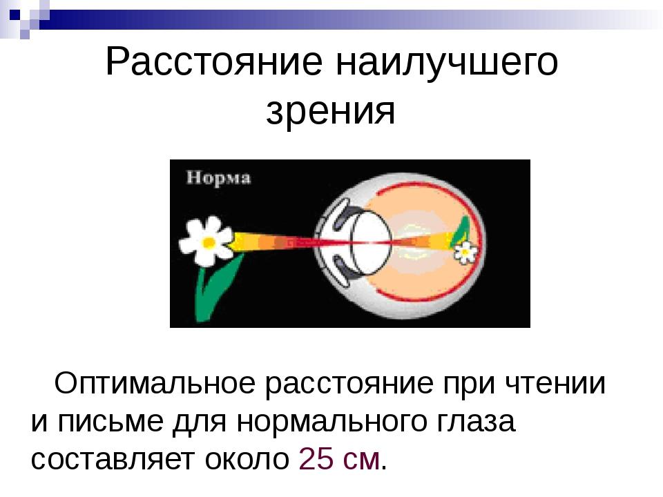 Чем смотрит человек? «Мы смотрим не глазами, а мозгом», – говорят физиологи....