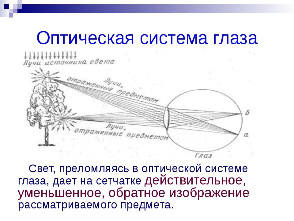 Дефекты зрения дальнозоркость близорукость