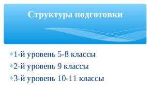 1-й уровень 5-8 классы 2-й уровень 9 классы 3-й уровень 10-11 классы Структур