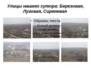 Улицы нашего хутора: Березовая, Луговая, Сиреневая