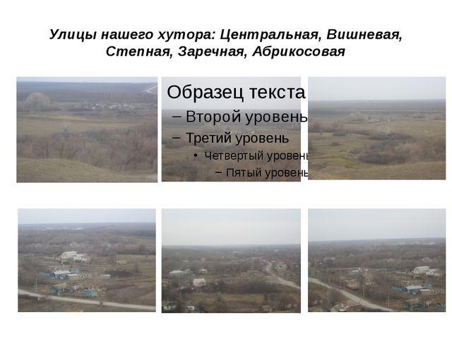 Улицы нашего хутора: Центральная, Вишневая, Степная, Заречная, Абрикосовая