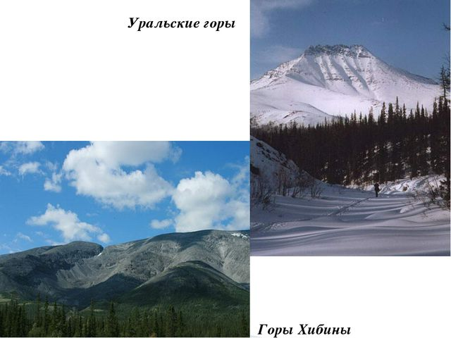 Рассмотрим карту Ростовской области. Какие формы рельефа характерны для Росто...