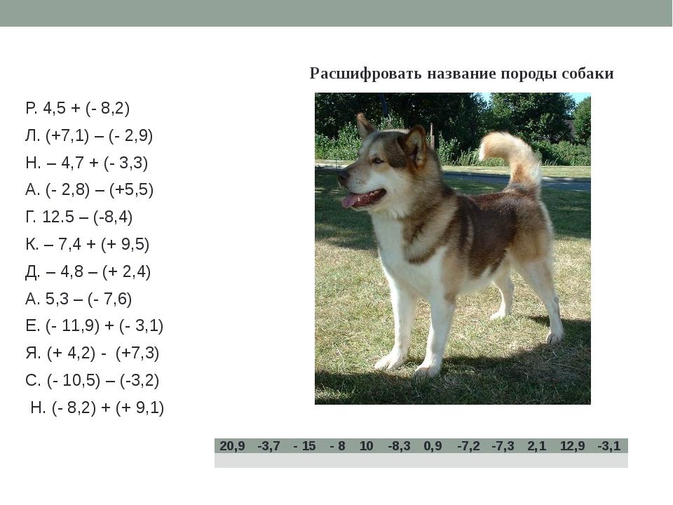 Расшифровать название породы собаки Р. 4,5 + (- 8,2) Л. (+7,1) – (- 2,9) Н....