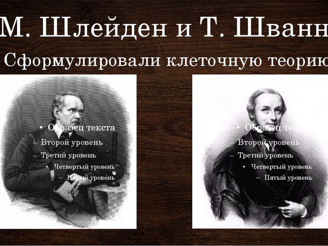 М. Шлейден и Т. Шванн Сформулировали клеточную теорию Ботаник Шлейден позже д...