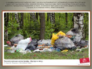 . А нерадивые жители могут выбросить пакет с мусором под ближайший куст, за б
