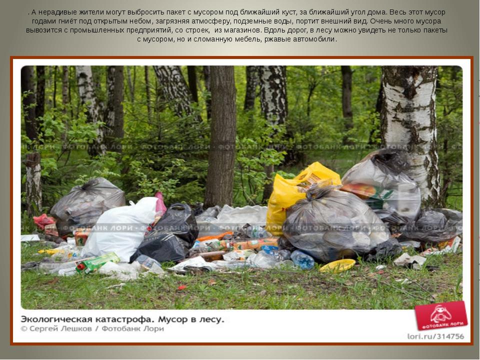 . А нерадивые жители могут выбросить пакет с мусором под ближайший куст, за б...