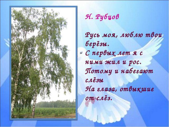 Н. Рубцов Русь моя, люблю твои берёзы. С первых лет я с ними жил и рос. Потом...