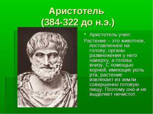 Аристотель (384-322 до н.э.) Аристотель учил: Растение – это животное, постав