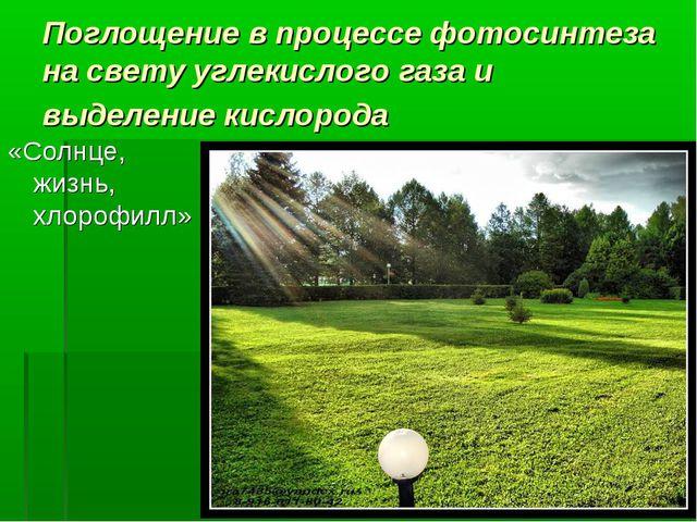 Поглощение в процессе фотосинтеза на свету углекислого газа и выделение кисло...