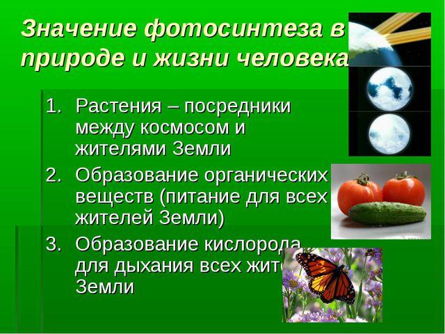 Значение фотосинтеза в природе и жизни человека Растения – посредники между к...