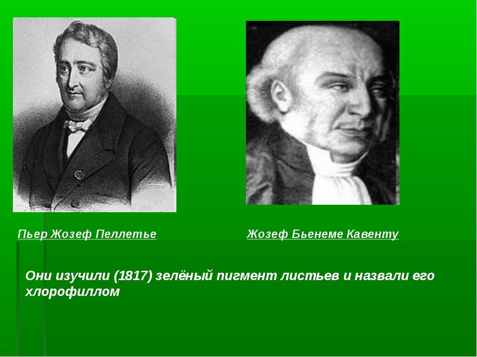 Пьер Жозеф Пеллетье Жозеф Бьенеме Кавенту Они изучили (1817) зелёный пигмент...