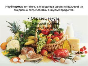 Необходимые питательные вещества организм получает из ежедневно потребляемых