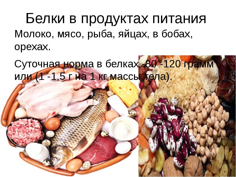 Белки в продуктах питания Молоко, мясо, рыба, яйцах, в бобах, орехах. Суточна...