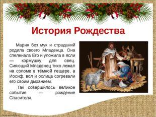 История Рождества Мария без мук и страданий родила своего Младенца. Она спеле