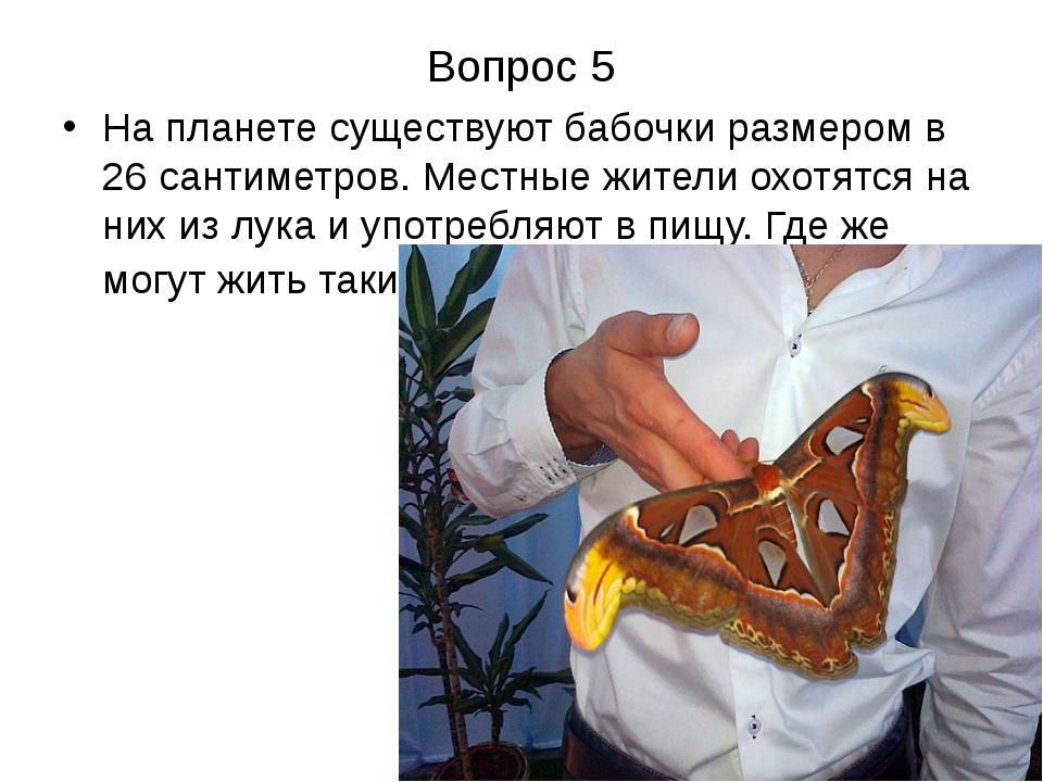 Вопрос 5 На планете существуют бабочки размером в 26 сантиметров. Местные жит...